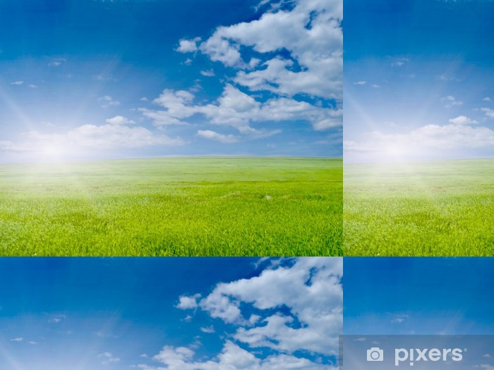 Vinyltapete Green grass - Landwirtschaft
