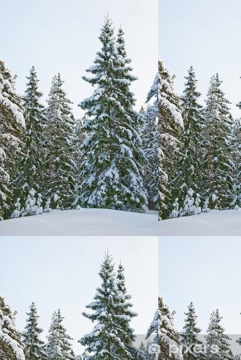 Vinyltapete Winter wald - Wälder