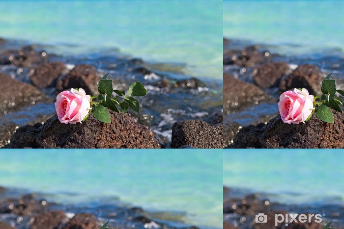 Vinylová Tapeta Růže leží na kamenech na moři pozadí. - Prázdniny