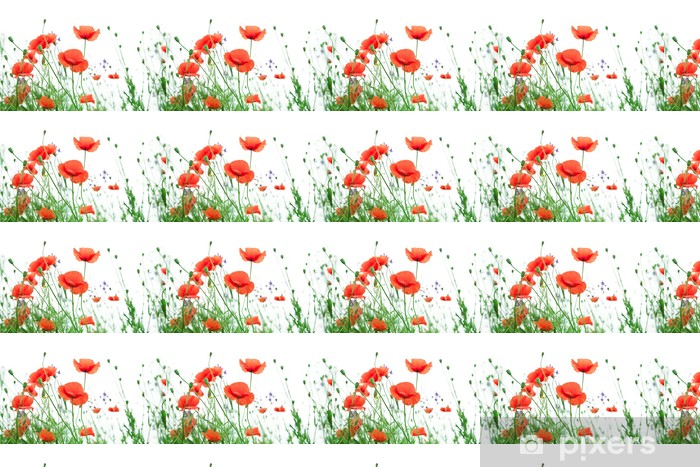 Papier peint vinyle sur mesure Coquelicot - Fleurs