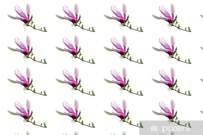 Tapeta na wymiar winylowa Kwiat magnolii - Dom i ogród