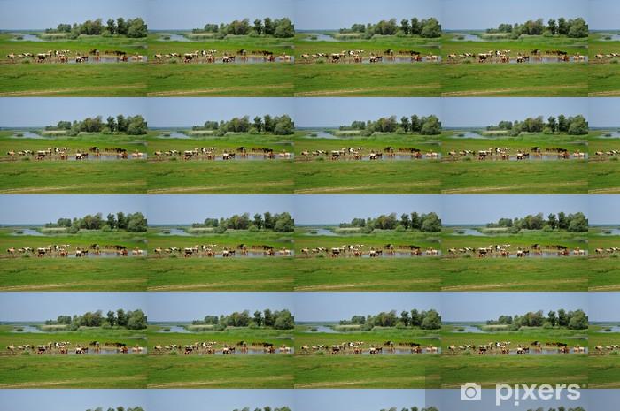 Papier peint vinyle sur mesure Des troupeaux de chevaux et des vaches sur le trou d'arrosage - Mammifères