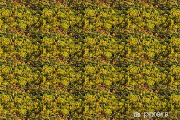 Tapeta na wymiar winylowa Jesienne liście - Przyroda