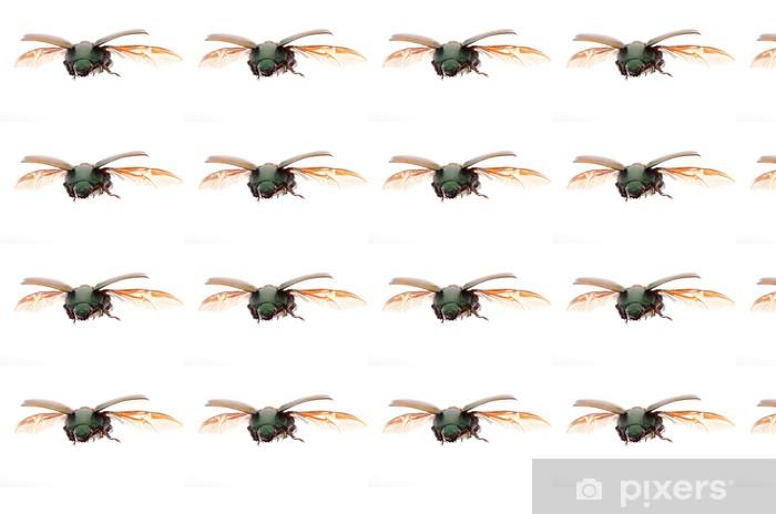 Vinylová tapeta na míru Létající hmyz Skarabeus - Ostatní Ostatní