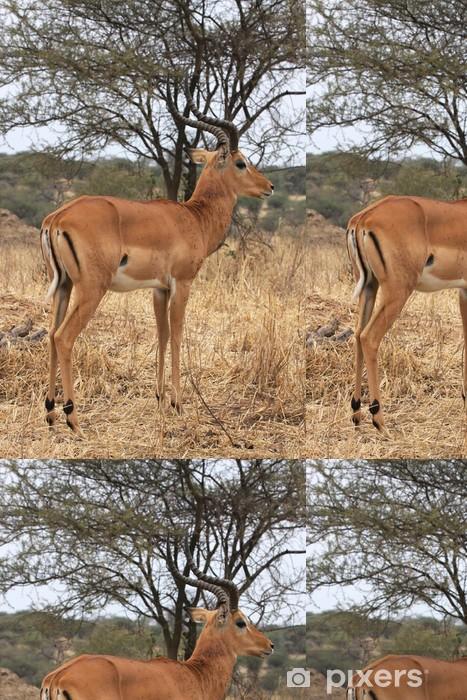 Vinylová Tapeta Impala male - Prázdniny