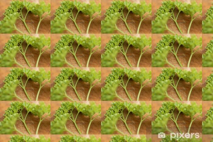 Vinylová tapeta na míru Spousta čerstvě odebrané petržele (Petroselinum crispum). - Domov a zahrada