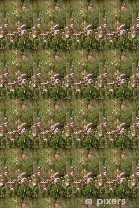 Carta da parati in vinile su misura Маленькие фиолетовые цветочки в поле - Fiori