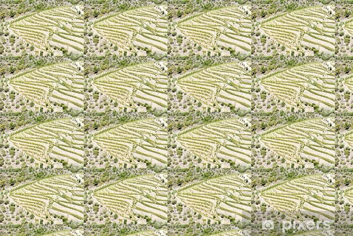 Vinyltapete nach Maß Vineyars in Douro Valley, Portugal - Landwirtschaft