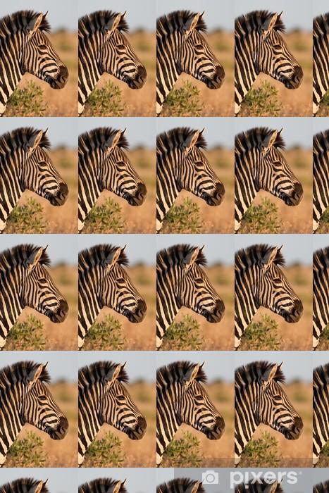 Vinyltapete nach Maß Ein Zebra Portrait im goldenen Licht - Themen