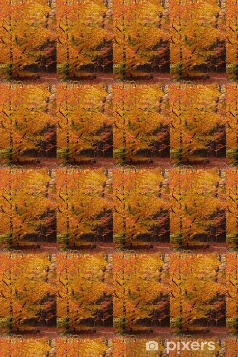 Papier peint vinyle sur mesure Voie de sable avec des arbres en automne - Saisons
