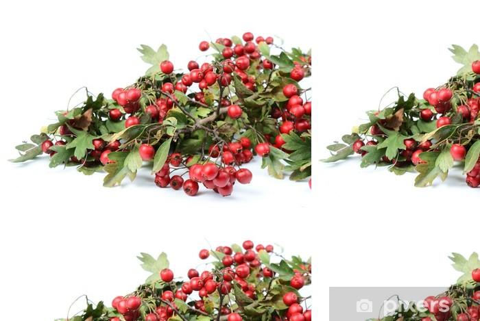 Papier Peint à Motifs Vinyle Automne fruits rouges - aubépine - Saisons