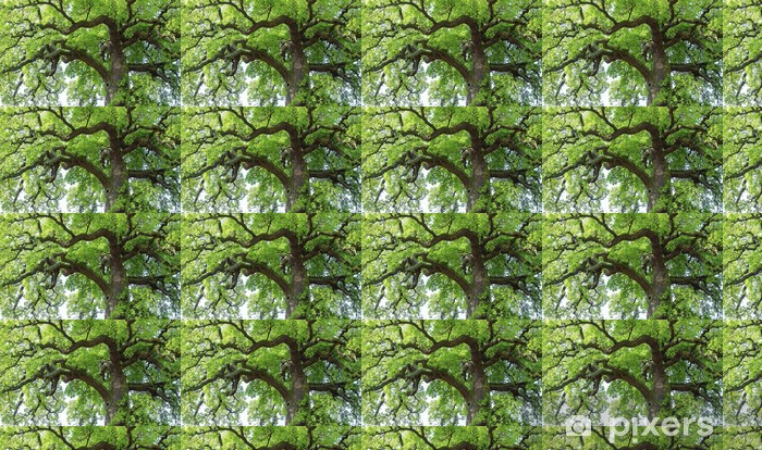 Vinylová tapeta na míru Oak # 28 - Stromy