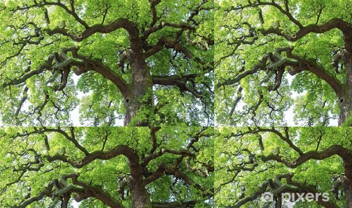 Vinylová Tapeta Oak # 28 - Stromy