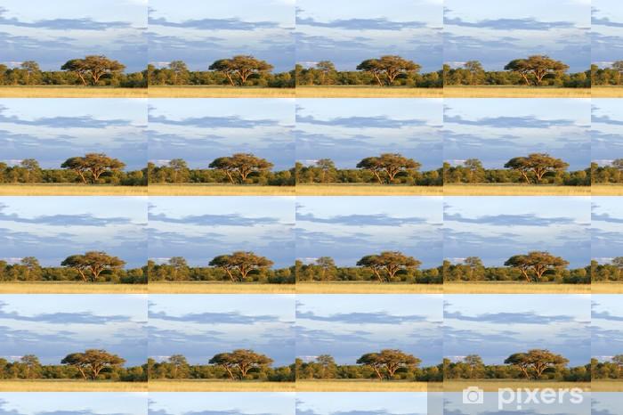 African Acacia tree Vinyl custom-made wallpaper - Themes