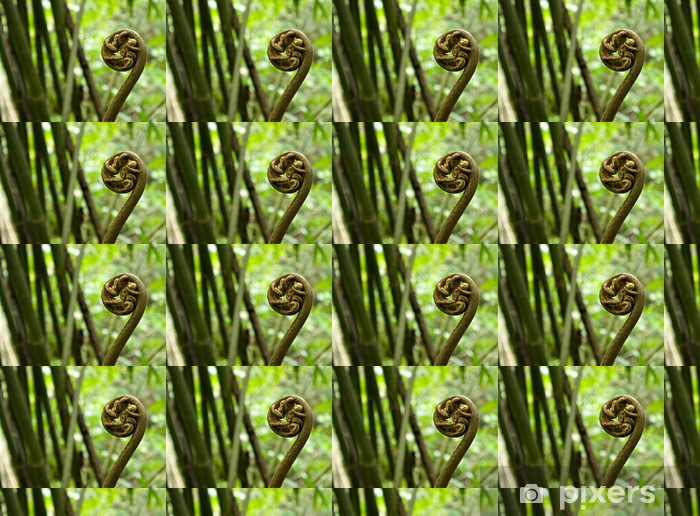 Tapeta na wymiar winylowa Makro fiddlehead paproci w lesie deszczowym w Tahiti - Rośliny