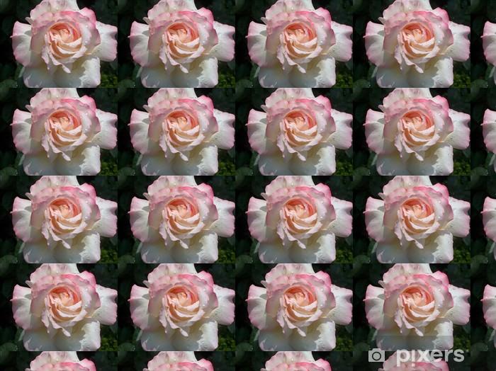 Vinyltapete nach Maß Gloria Dei, Edelrose mit Regentropfen - Blumen