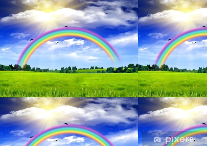 Papel Pintado Estándar Arco iris en el cielo azul sobre un claro - Fondos