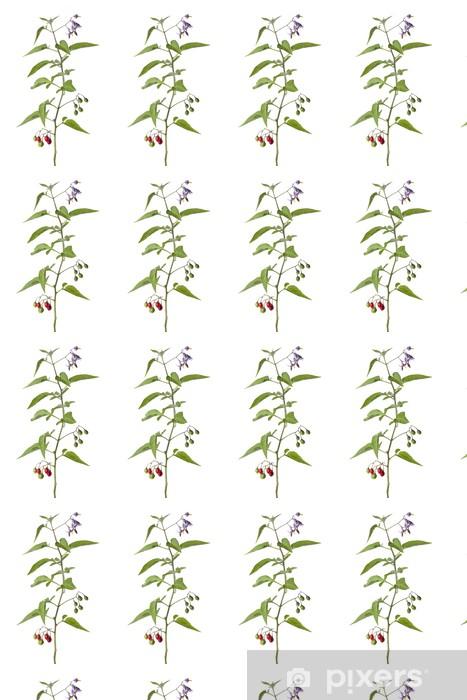 Tapeta na wymiar winylowa Bittersweet roślin z kwiatów i jagód - Rośliny