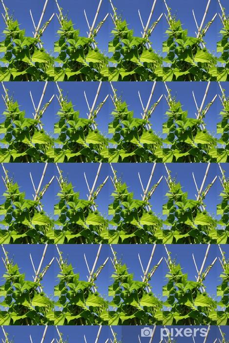 Tapeta na wymiar winylowa Rośliny fasoli - Rolnictwo
