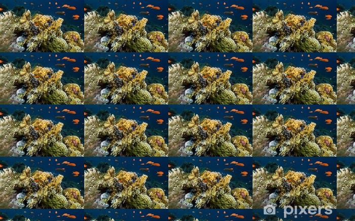 Tropical underwater life in the Red Sea. Vinyl custom-made wallpaper -