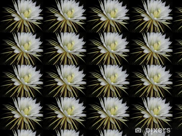 Tapeta na wymiar winylowa Cereus. - Kwiaty