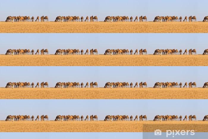 Özel Boyutlu Vinil Duvar Kağıdı Çölde deve sürüsü - Memeliler