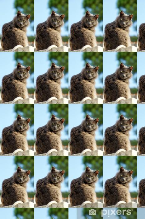 Vinylová tapeta na míru Lucifer kočka - Savci