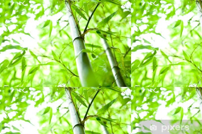 Vinylová Tapeta Bambusový les - Témata