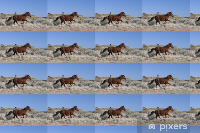 Tapeta na wymiar winylowa Dziki koń z systemem - Ssaki