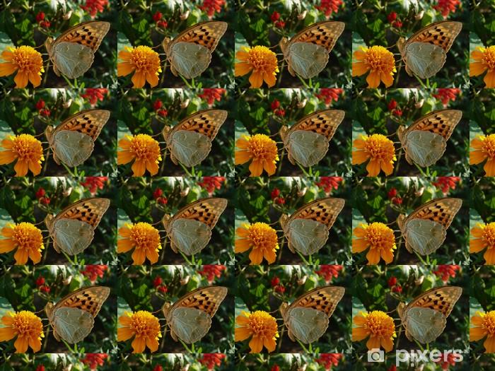 Tapeta na wymiar winylowa Motyl pije nektar z kwiatów - Inne Inne