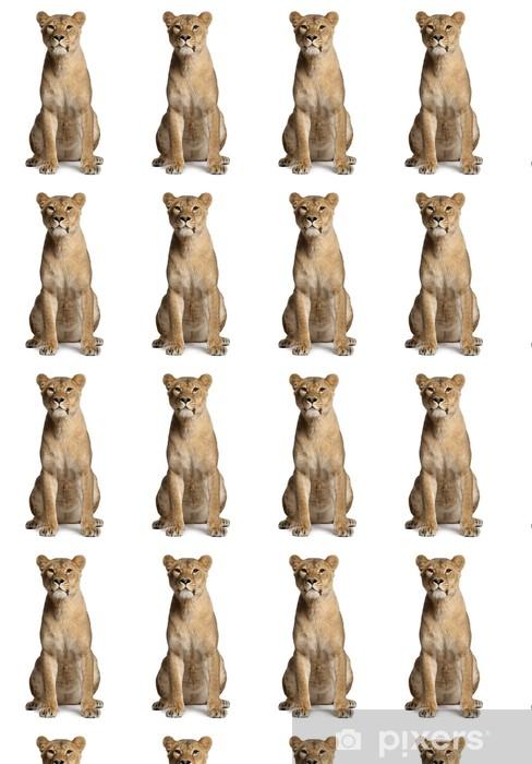 Papier peint vinyle sur mesure Lionne, Panthera leo, 3 ans, assis - Mammifères