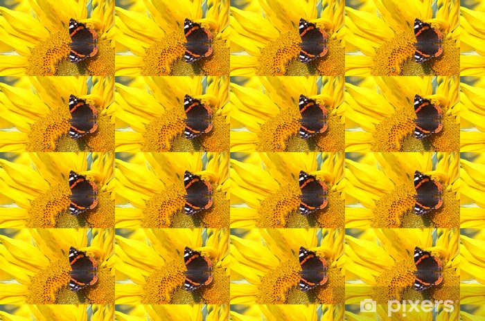 Tapeta na wymiar winylowa Obraz z żółtym słonecznika i motyl 544 - Rolnictwo