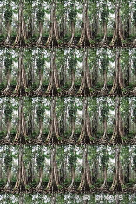 Vinyl behang, op maat gemaakt Küstenregenwald in Costa Rica - Wildernis