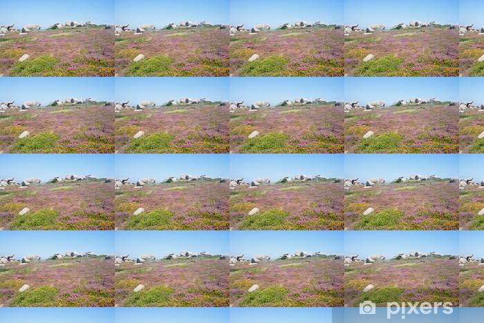Tapeta na wymiar winylowa Kolorowe wrzosowisko na skalistym wybrzeżu Bretanii, Francja - Krajobraz wiejski