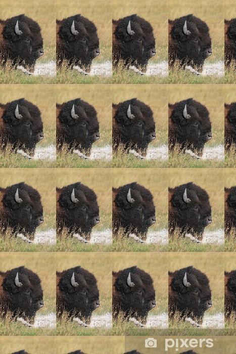 Vinylová tapeta na míru Americký bizon (Buffalo) Close-up - Savci