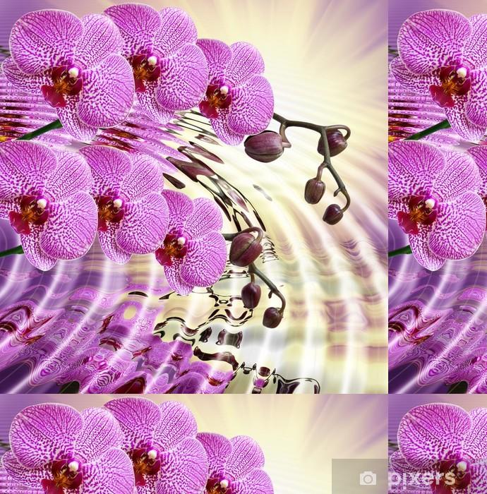 Vinylová Tapeta Detailní záběr na květ orchideje - Témata
