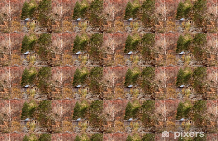 old settlers cabin in the forest Vinyl custom-made wallpaper - Heavy Industry