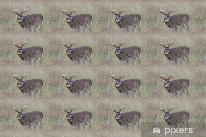 Papier peint vinyle sur mesure Whitetail cerf mâle dans un champ brumeux - Thèmes