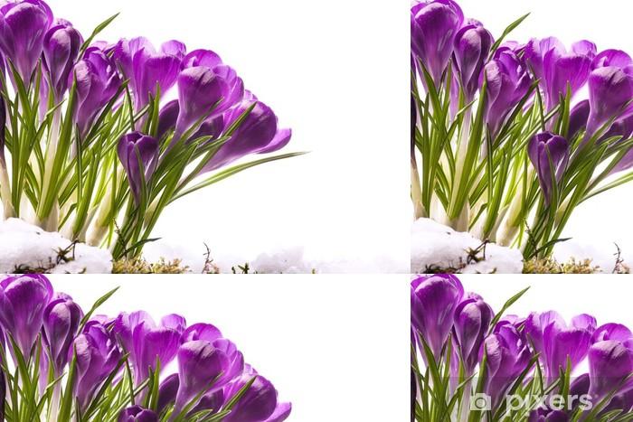 Tapete Art Beautiful Spring Flowers Pixers Wir Leben Um Zu