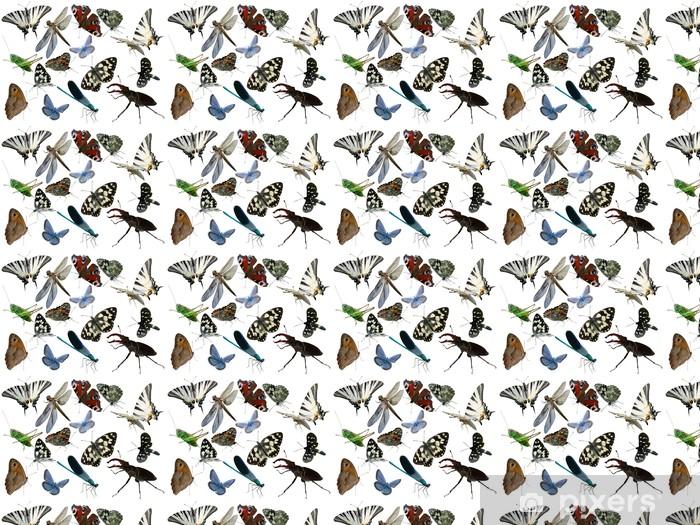 Vinylová tapeta na míru Motýli Vážka chyby hmyz je izolovaný - Ostatní Ostatní