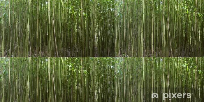 Tapete Bambus Wald Auf Der Insel Maui Hawaii Pixers Wir Leben