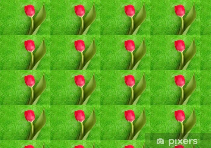 Vinylová tapeta na míru Červený tulipán - Roční období