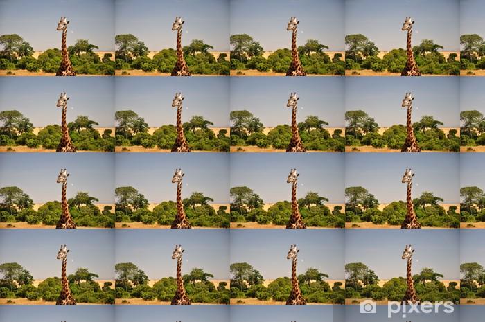 Papier peint vinyle sur mesure Girafe - Thèmes