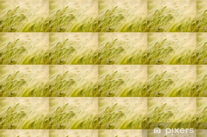 Tapeta na wymiar winylowa Barley field - Posiłki