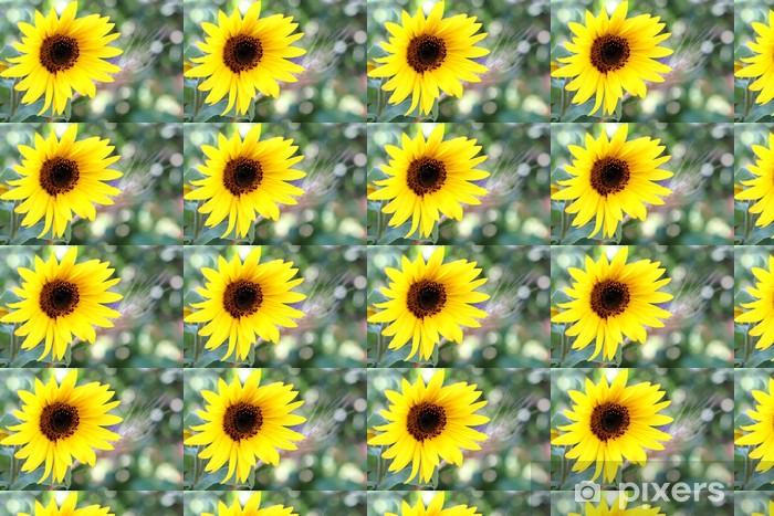 Papier peint vinyle sur mesure Magnifique détail de sunflowr - Fleurs