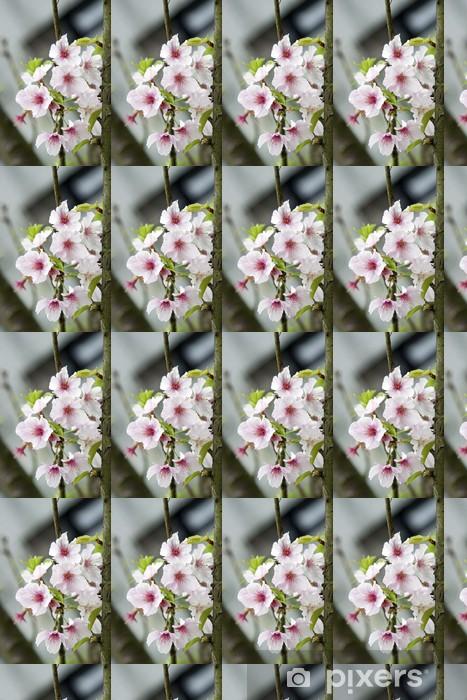 Papier peint vinyle sur mesure Blanc fleurs de cerisier - Fleurs