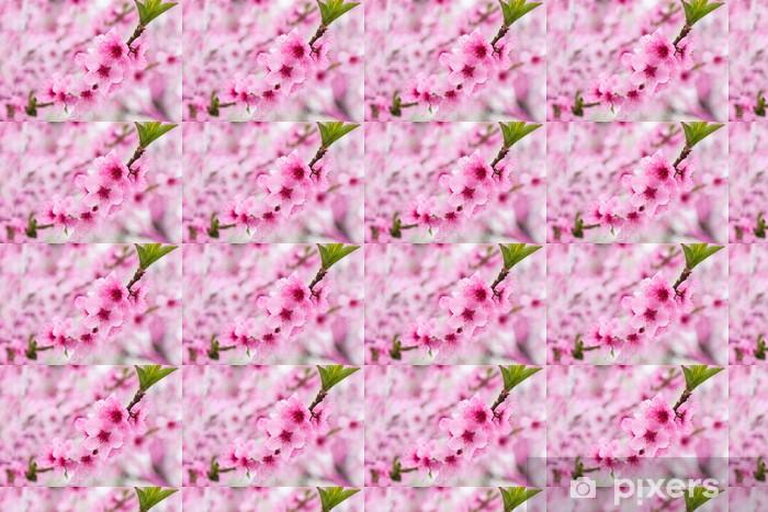 Vinyltapete nach Maß Blühender Baum im Frühjahr mit rosa Blumen - Stile