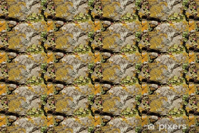 Papier peint vinyle sur mesure Un rocher couvert par les muscs et les plantes - Plantes