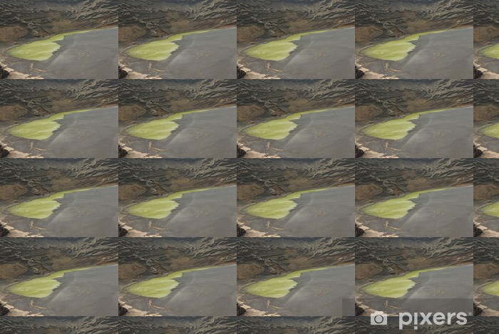 Tapeta na wymiar winylowa Wnętrze wulkan z al Mar - Życie