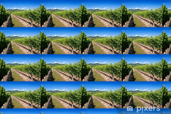 Carta da parati in vinile su misura Toscana vigneto - Temi